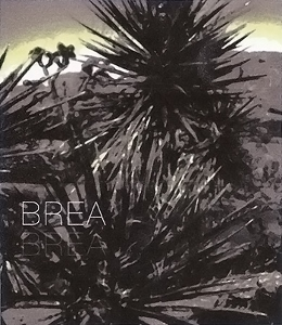 label_brea_2012_cab_01-260x300